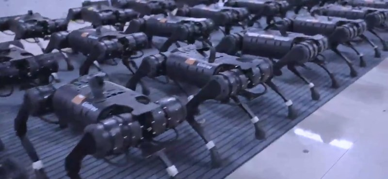 It's cool how dozens of Chinese robot dogs move simultaneously - video
