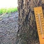 Itt az újabb melegrekord, hétvégén is kitart a korai nyár