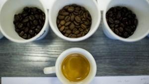 Az összes iskolában betiltják a kávét, sem a diákok, sem a tanárok nem vásárolhatnak