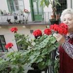 Az LMP csaknem megduplázná a nyugdíjminimumot