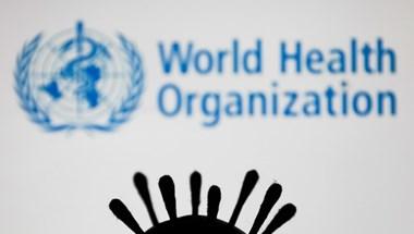WHO: Új vírusmutáció jelent meg Indiában, a fertőzések száma azóta nő
