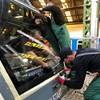 Valaki egy fűnyírót tett a sínekre Dunakeszi és Göd között, milliós kár keletkezett vonatban