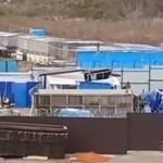 Több mint 100 bálnát tartanak fogva egy orosz kikötőben – videó