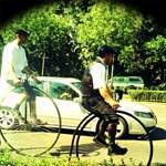 A nap bringája