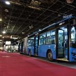 Új busznagyhatalom nőhet Magyarország fejére
