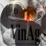 Közép-Európa boriránytűje: VinAgora