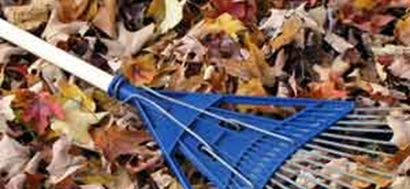 10 teendő szeptemberben: őszi munka a kertben