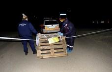 Emberi csontokat találtak egy szentendrei ház udvarán