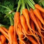 A sárgarépa nem csak nyúlkaja – tökéletes recept