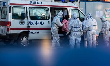 Koronavírus: egy nap alatt 242-en haltak meg