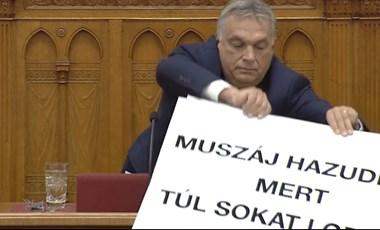 Hadházy: Aki ellenzékiként lop, annak nem kezét, hanem a péniszét kell levágni