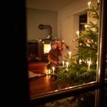 Jobban élünk, mint egy éve: sokkal több megy el karácsonyra