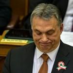 Gomperz: A Nébih kivonja Orbán Viktort a forgalomból
