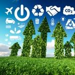 Megvalósított vállalati fenntarthatóság: amikor nem csak a köd zöld