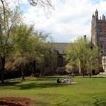 Gyapotot szedő rabszolgák alatt kellett dolgoznia az amerikai egyetemen, bepöccent