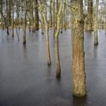 A Körösökön is megindult az áradás, annyi eső esett, és a belvízzel is baj van