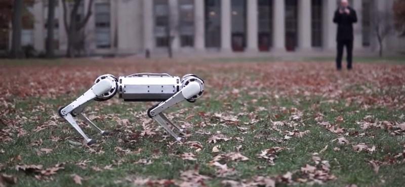Videó: lenyűgöző, hogyan hátraszaltózik az MIT új robotja