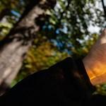Lezárult a vita a legendás magyar sör körül