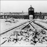 Százezres pénzbírságot kapott két magyar, aki Auschwitzból akart téglát hazahozni