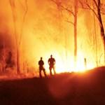 Nemcsak a bozóttüzek, a füstjük is ölt Ausztráliában