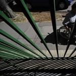 A fogyatékkal élő hallgatók jogainak érvényesülését vizsgálja a jogbiztos