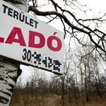 Csaltak a földárveréseken, vádat emeltek ellenük