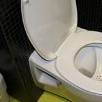 A nyitva hagyott wc lenne a felelős a reggeli rosszullétért?