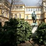 Fábri György: fokozatosan lemaradnak a kelet-európai egyetemek