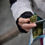 New Jersey az elnök mellett a marihuána legalizálását is megszavazta
