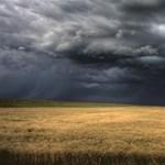 Időjárásnak kitett termelés – ezzel a 4 dologgal biztosíthatják be magukat a gazdák