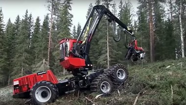 Perverz érzés bámulni a világ legfélelmetesebb erdőirtó munkagépeit – videó