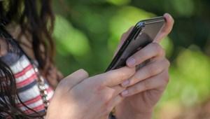 Néhány szuper app a lazításhoz: séta az erdőben