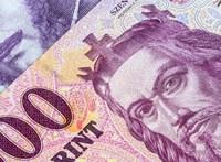 Állami és uniós támogatásokat nyúlt le egy magyar bűnszervezet