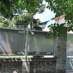 A rendőrségtől kétszáz méterre működött a lopottautó-bontó – fotók