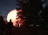 Eltolták a Kolorádó fesztivált augusztusra