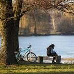 Hideggel indul, tavasziasra fordul az idő a jövő héten