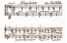 Bartók-darab nevét vette fel az Alapjogvédő Iroda
