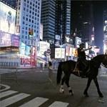 Bosszút állt a ló a részeg egyetemistán: videó