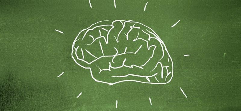 Gyilkos memóriateszt ebéd utánra: milyen az emlékezőképességetek?