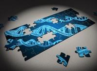 Felszólalt a WHO: felelőtlenség lenne emberi reprodukciós célokra használni a génszerkesztést