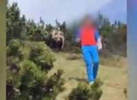 Szürreális medvejelenetet videóztak le Olaszországban