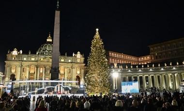 Felkapcsolták a fényeket a Vatikán karácsonyfáján