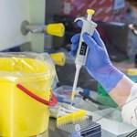 Már tavaly decemberben megjelenhetett a koronavírus Franciaországban