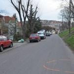 Kutya okozott balesetet Egerben