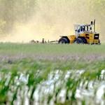 Egyre gyorsabban nőnek a mezőgazdasági árak