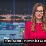 Austrian journalist attacked in media: