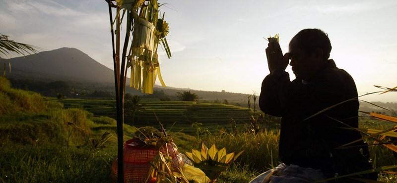 Megmondjuk a kazahoknak, hogyan kell rizst termeszteni
