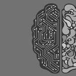 Érdekli a mesterséges intelligencia? 30 órás ingyenes képzés indult, ön is elvégezheti, ráadásul otthonról