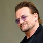 Adóelkerülés művészi szinten: tanuljon a rocksztároktól