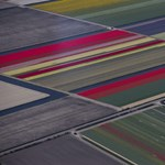 Hágában elmeszelték Hollandiát – túl szerény kibocsátáscsökkentést vállalt
